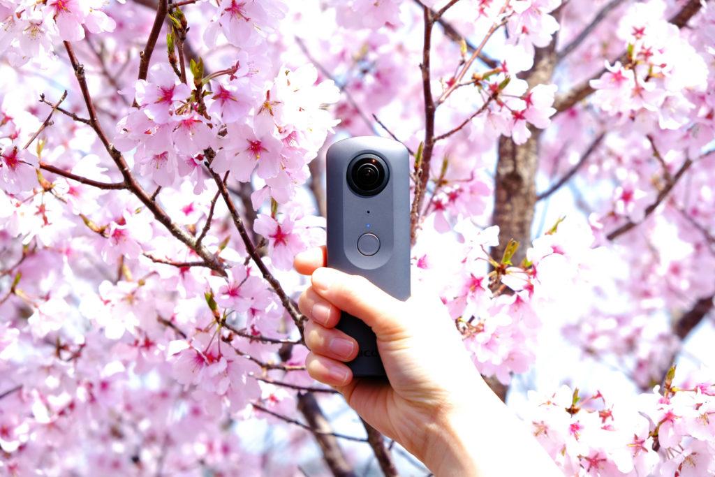桜 THETA V