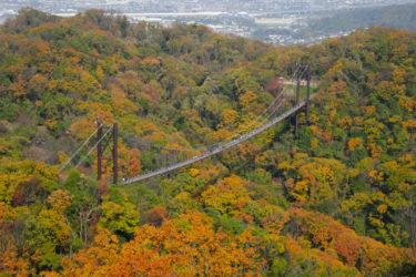 『星のブランコ』それは大阪にある最大級の吊橋―紅葉編―