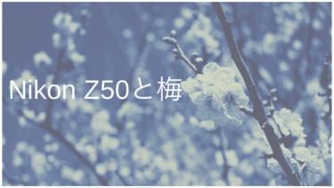 Nikon Z50で近所の梅を撮ってきた!(撮って出し)