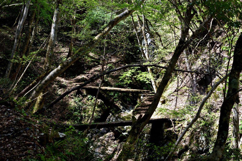 兵庫 日本の滝百選 天滝