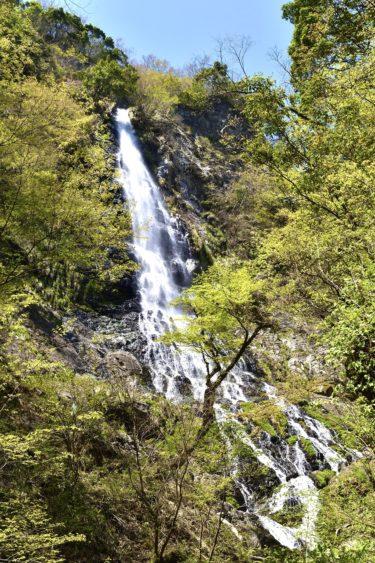 日本の滝百選「天滝」。総落差98m兵庫県で1番の滝!