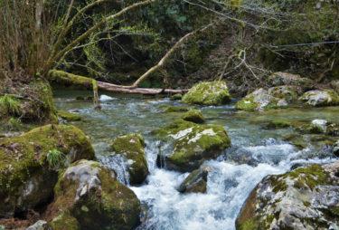 迫力は兵庫県最大級!?日本の滝百選「原不動滝」で自然の壮大さをその目に!
