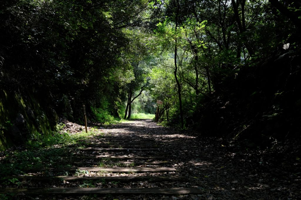 武庫川渓谷 廃線敷 ハイキング