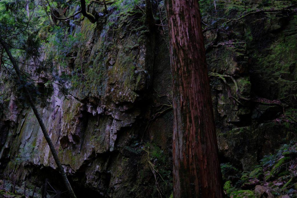 笹の滝 日本の滝百選