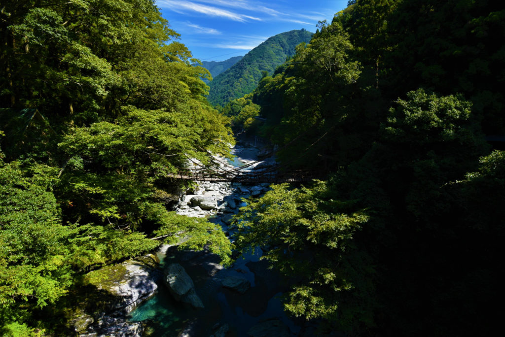 徳島 祖谷のかずら橋 旅行