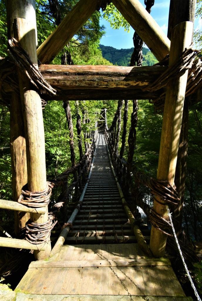 徳島旅行 奥祖谷のかずら橋