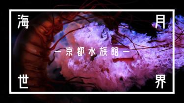 思う存分「クラゲ」を撮ってきた!|京都水族館