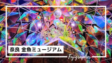 幻想的なテーマパーク『奈良 金魚ミュージアム』